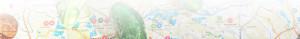 Mapa - ogórek